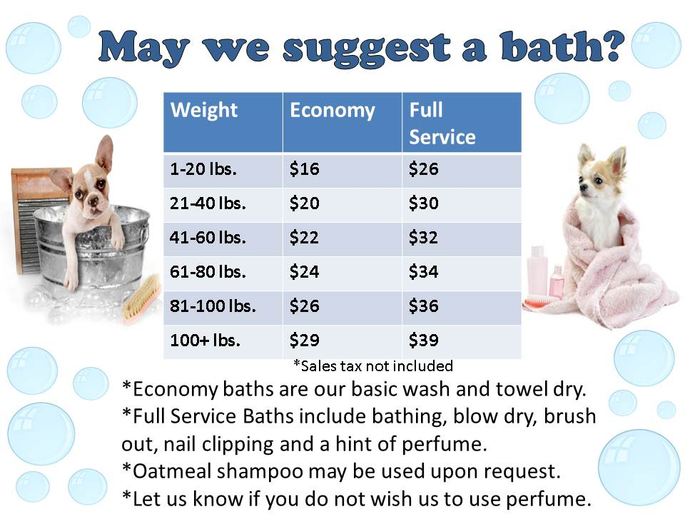 bath prices toothacres petcare center With dog boarding cost