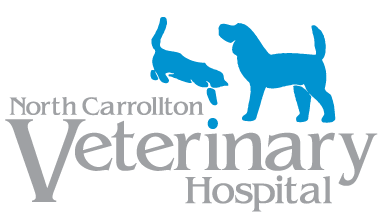 Recommended Veterinarians | ToothAcres Petcare Center